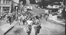 22,. LA INVASIÓN DE LOS LADRONES DE CUERPOS (Don Siegel, 1956) EE.UU.