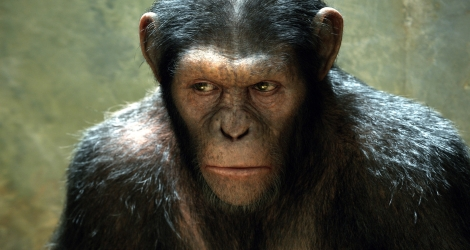 rise_of_the_planet_of_the_apes_movie-wide