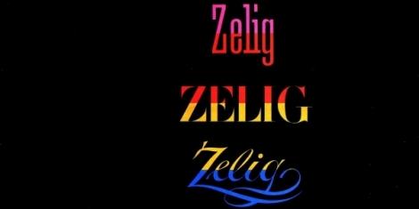 zelig-banner