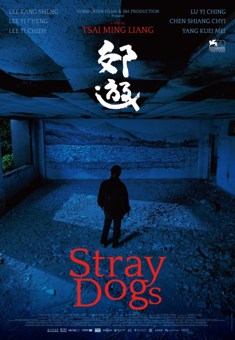 stray dogs - 1